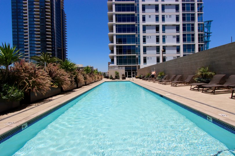 Sparkling pool for swimming laps or relaxing on the deck wih friends at Sapphire Tower.
