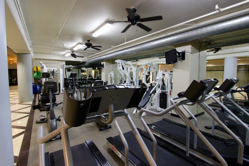 Solara Lofts, City: Downtown San Diego, gym, treadmill, fans