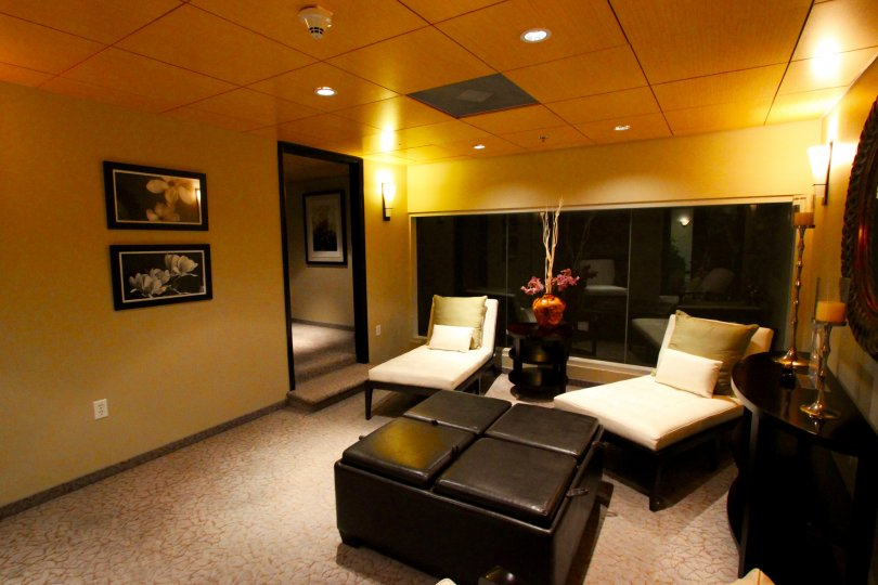 Hall decorated in gold color paint with sofa, furniture and photo frames in the building in Solara Lofts