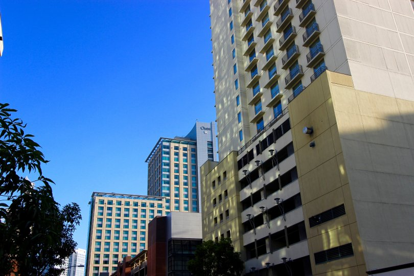 This high-rise shadows the trees below it on a sunny day in San Diego