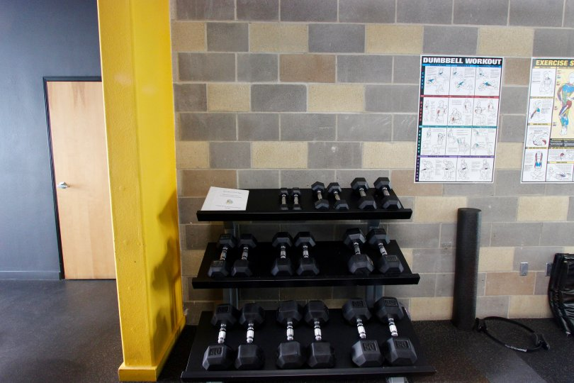 Free weight selection in recreation area at The Lofts @ 777 Sixth in Downtown San Diego, CA