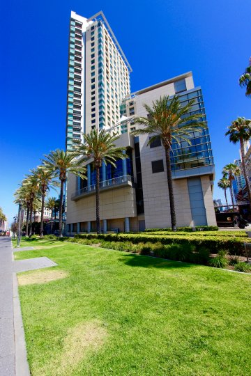 A warm and sunny day with the street view showcasing the modern architecture of the massive building of The Metropolitan with Palm tree lined streets