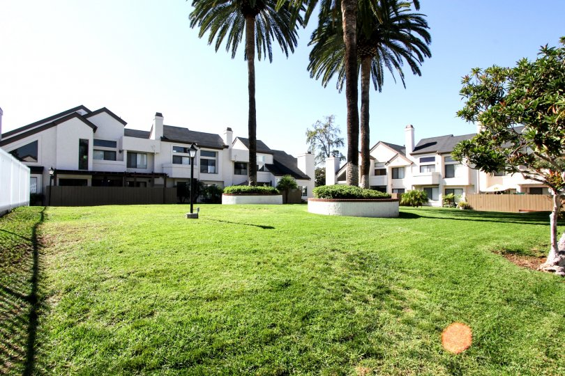 Beautiful green area in the Beacon Street community in El Cajon, California
