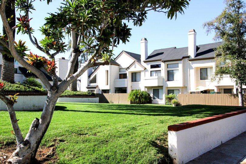 Superbly beautiful Neighborhood and Houses in Beacon Street, El Cajon, California