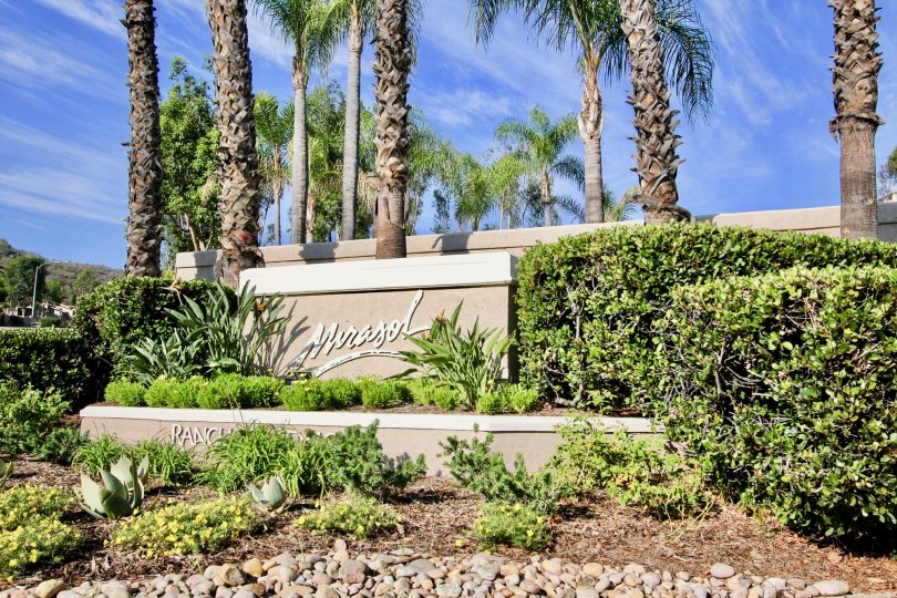 "A big sign saying ""Mirasol"" with some bushes and palm trees in the back during a sunny day in Mirasol, El Cajon, CA"