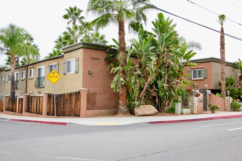 Houses and palm trees in Oasis Palms, El Cajon, California