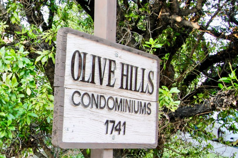 Condo sign in front of trees at Olive Hill in El Cajon CA