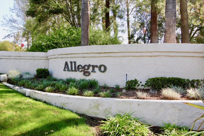 Allegro  , Escondido ,: California,namr, trees, bushes