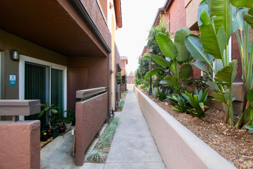 Walkway between residential buildings at Artesia in Escondido California
