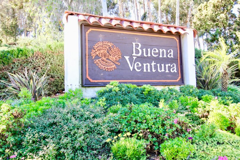 Sign for Buena Ventura surrounded by shrubbery located in Escondido, California