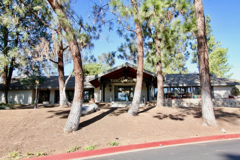 Ranch style housing with front patio with large mature trees at Castle Creek Villas