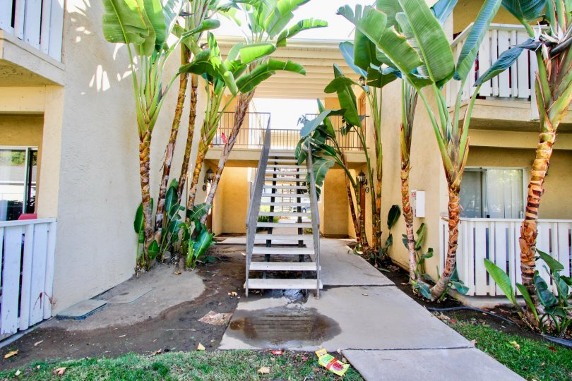 Hampton Place , Escondido , California, trees, staircase,concrete floor