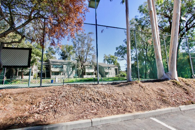 Sommerset Villas,: Escondido  , California,tree bark,sand,road