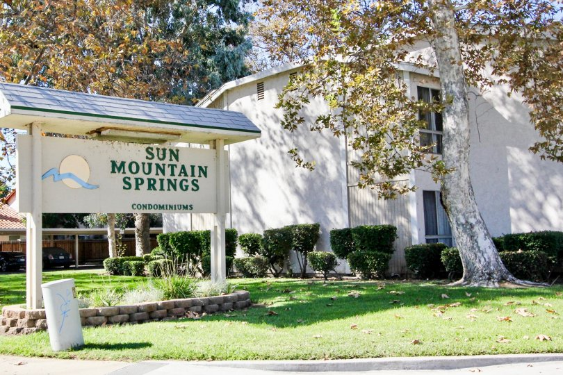 Sun Mountain Springs in Escondido California is surrounded by lush greenery and tall deciduous trees