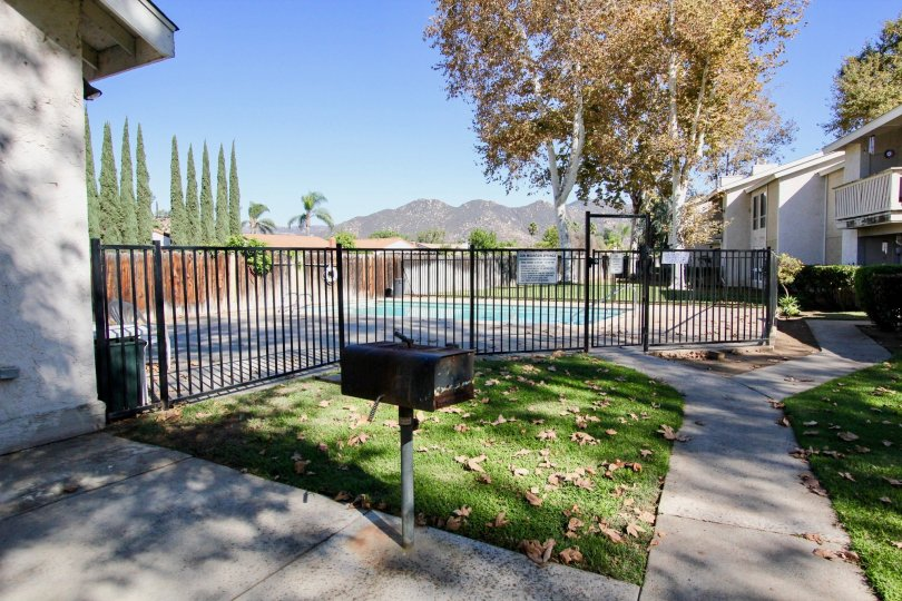 Sun Mountain Springs  ,Escondido ,California, black fence,lawn