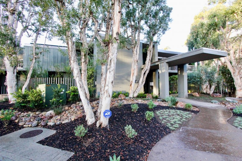 THE GREENY HOUSE IN THE 3100 FRONT WITH THE PATHWAY, PLANTS, TREES, ELECTRIC BOX, BALCONI