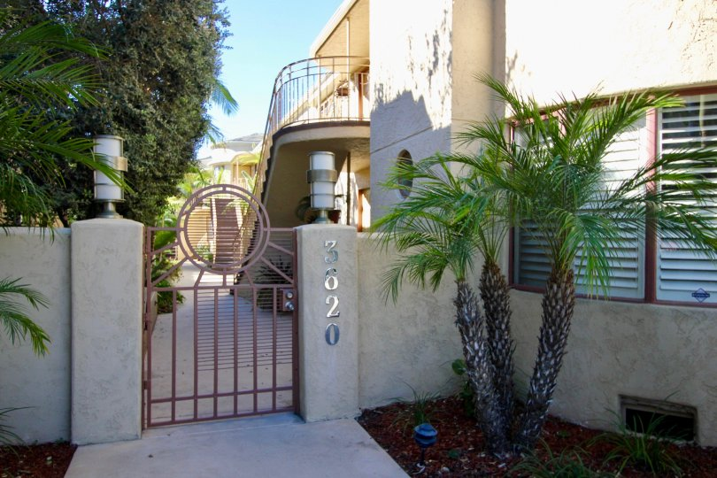 THE 3620 APARTMENT IN THE BALBOA COURT WITH THE PLANTS, UPSTAIRS, TREES