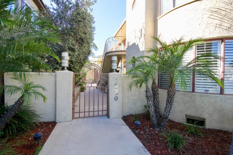 THE 3620 APARTMENT IN THE BALBOA COURT WITH THE TREES, PLANTS, UPSTAIRS