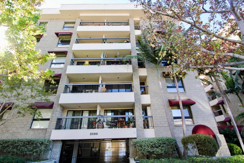 THE 3560 APARTMENT IN THE BANKERS HILL TOWERS WITH THE BALCONIS, TREES, FLOWER POT, PLANTS