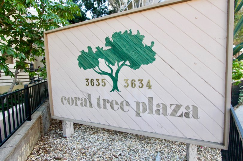 THE 3634, 3635 APARTMENTS IN THE CORAL TREE PLAZA WITH THE CORAL TREE PLAZA BOARD, TREES, PLANTS
