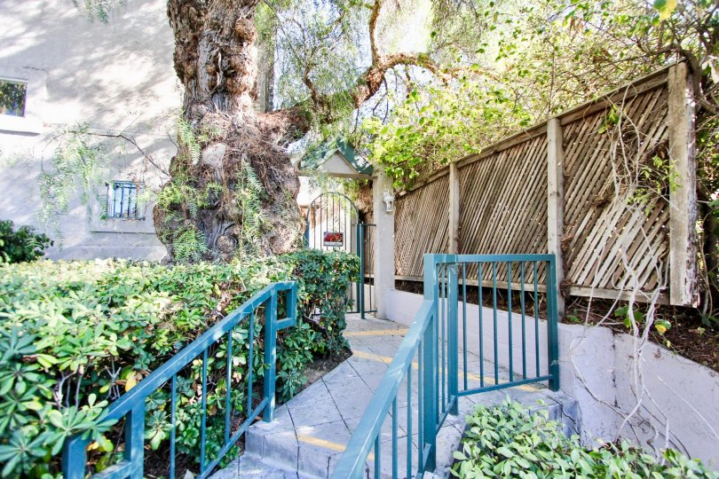 Side view of staircase, gate with trees of Eucalyptus community in Hillcrest, CA