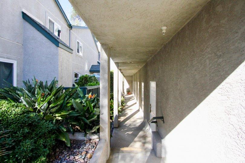 A ground-level concrete hallway in the Eucalyptus neighborhood.
