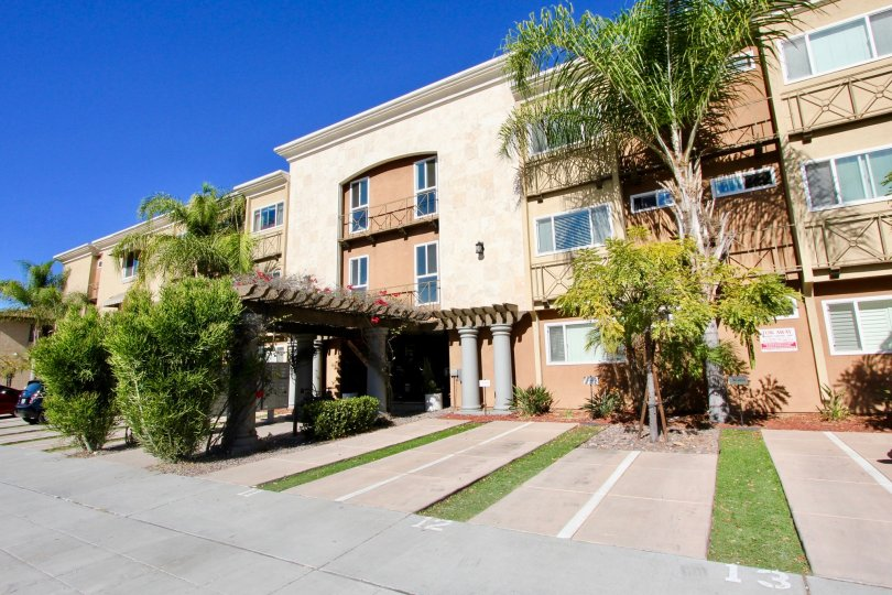 The front entrance of the Hill Crest Towers apartment homes with palm trees, shady front entrance, and private drive ways.