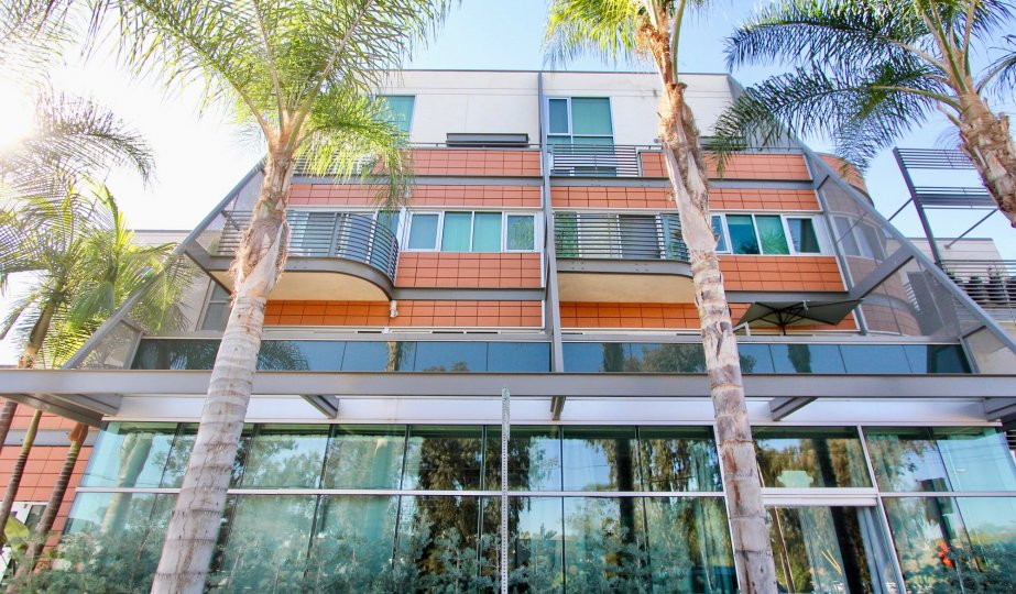 Stunning modern style architecture with large bay windows and horizontal balcony railings with tall palms at the Monde