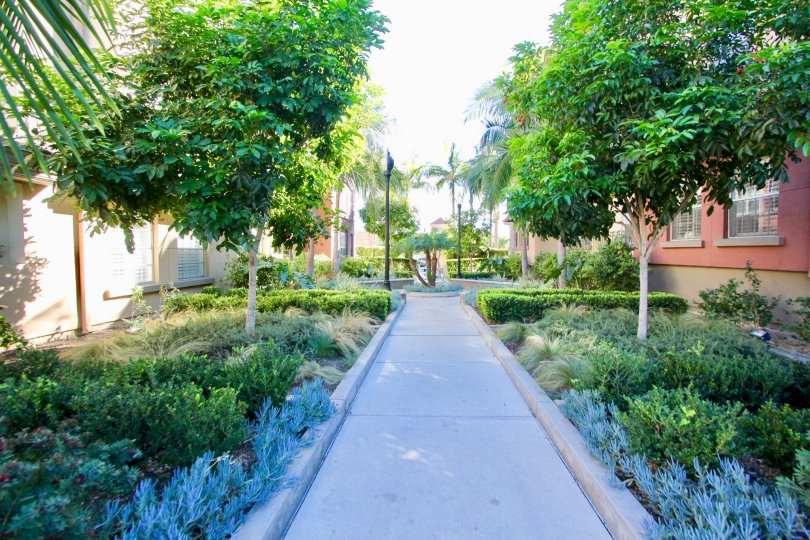 Fabulous park with greenary in between villas in Uptown District of Hillcrest