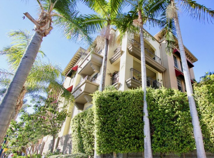 Excellent view of Apartment with palm trees and croton trees in Uptown District of Hillcrest