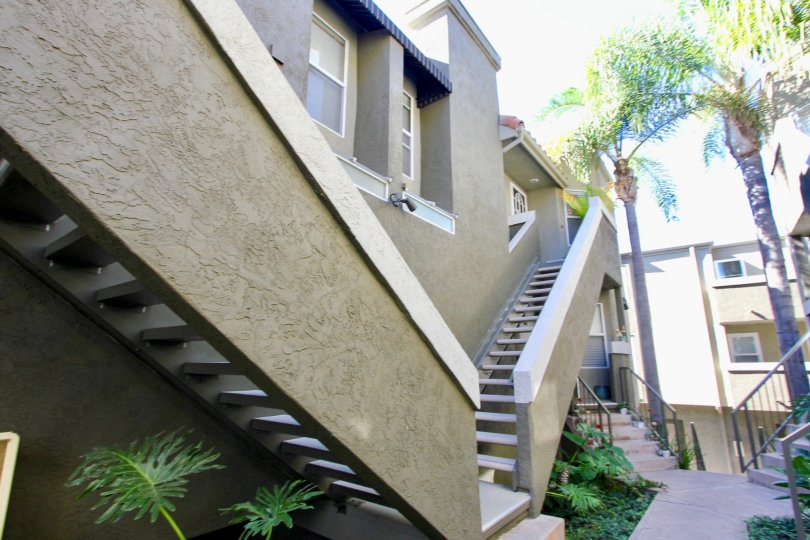 Stylish modern open-riser stairs with tall mature palm trees and multiple gardens in a courtyard in Hillcrest