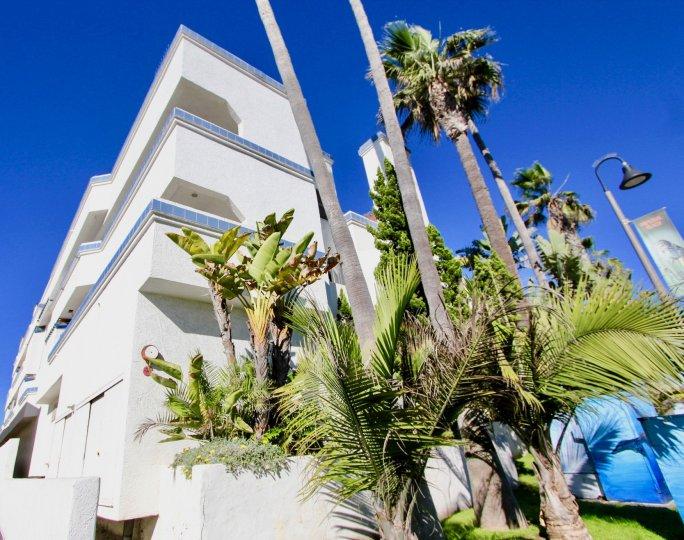 Residential high--rise at Ocean Point in Imperial Beach California