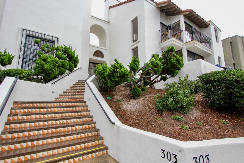 Beautifully designed stair way with gusty air blown trees of 303 Coast.