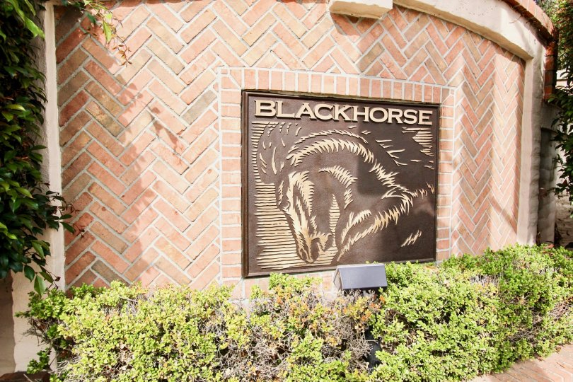 The building of Blackhorse shows the picture of horse in front gate