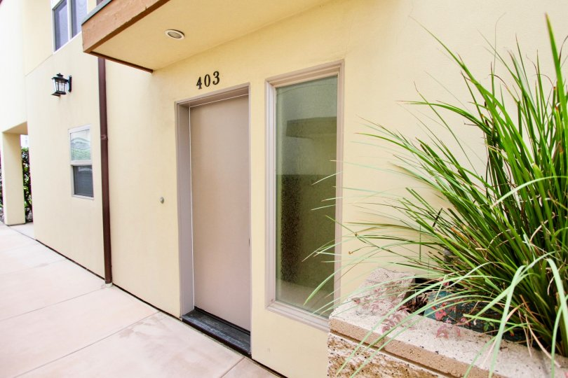 Brown door under black address with palm tree at Conair Street Condos in La Jolla CA