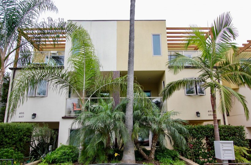 Three story building with a tall palm in front at Bonair Street Condos in La Jolla CA