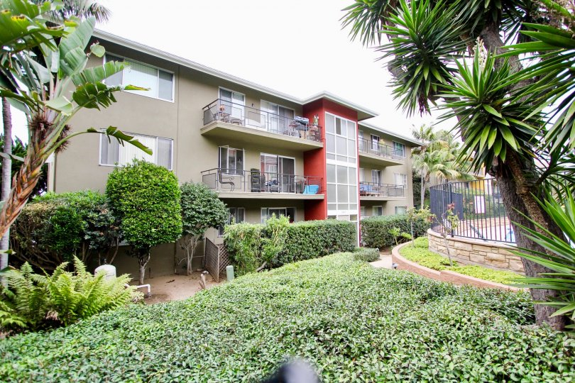 The apartments in Capri Aire is cover with bushes plants and trees