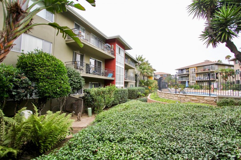 Three story gray residential units near ivy at Capri Aire in La Jolla CA