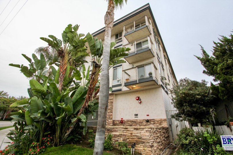 Four story condos with tall trees at Chateau Girard in La Jolla California