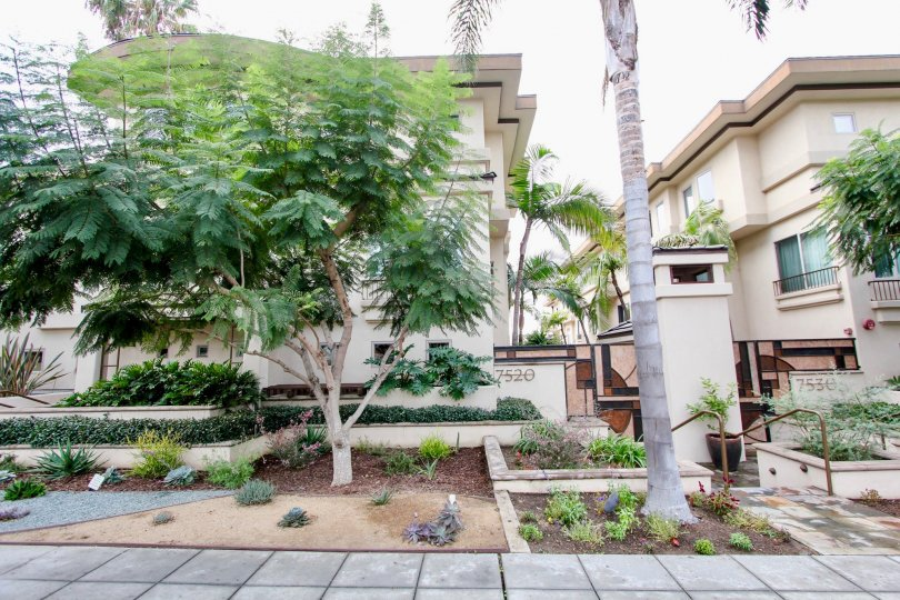 Three story residential units with garden and palms inside Draper Villas in La Jolla CA