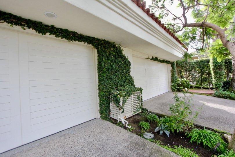Ivy covered garage doors inside El Paseo Grande in La Jolla CA