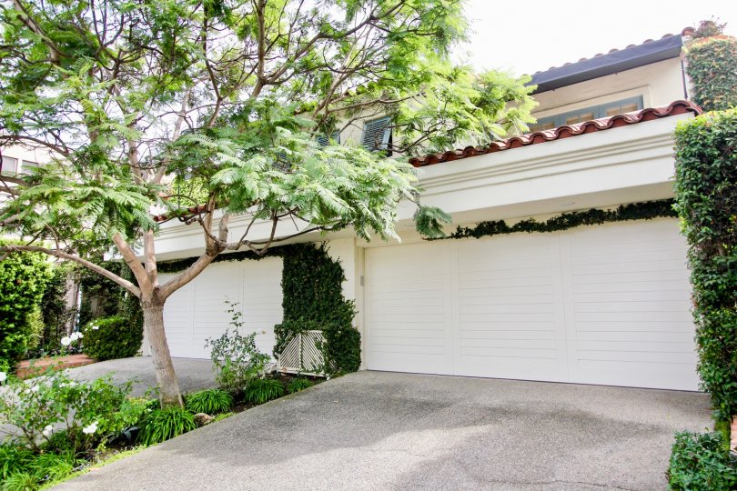 Two story homes with large garages & leafy trees at El Paseo Grande in La Jolla CA