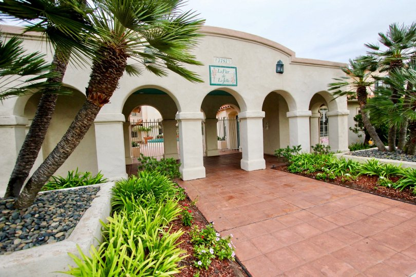 Awesome spacious in frontside with palm trees of a house in La Flor de La Jolla