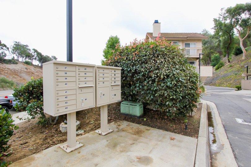Mail boxes near bush and other plants inside La Jolla Hideaway in La Jolla CA