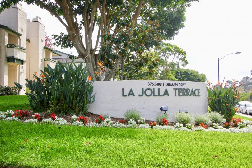 space of enjoying our beautiful moments in la jolla terrace