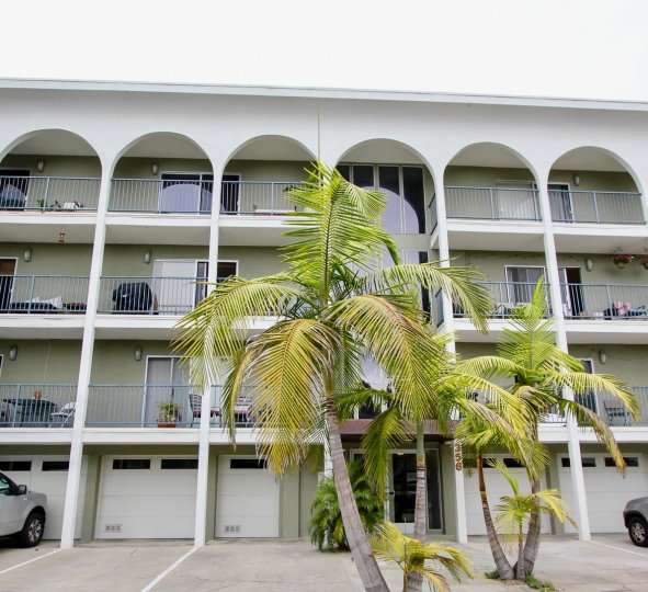 THE APPARTMENTS ARE BEAUTIFUL AND THE COCONUT TREE IS VERY CUTE WITH FRONT OF CARS