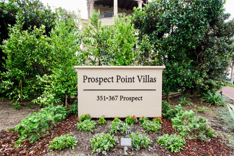 In Prospect Point Villas has a Box with the prospect of villas as 351-367 prospect in the middle of the garden surrounded with plants and bushes