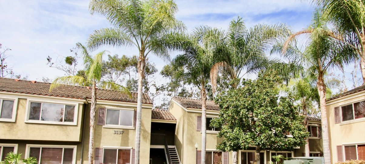 Villa Tuscana IN CALIFORNIA MOST ATTRACTIVE BUNGALOW NICE TREE COMFORTABLE STAYING PLACE CLIMATE CLEAN AREA