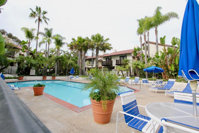 An empty swimming pool on a cloudy day with chairs, tables, plants and palm trees around apartments