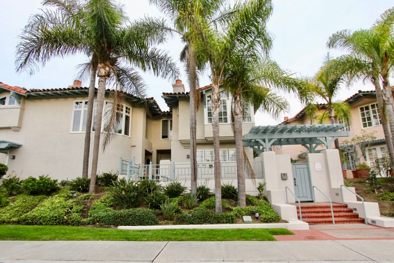 Palm trees and grassy lawn with steps to doorway at Villas of Ivanhoe in La Jolla, CA